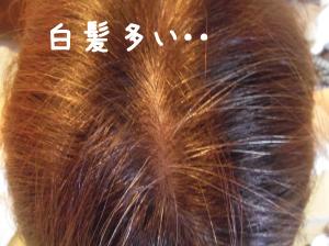 白髪染めの前の状態